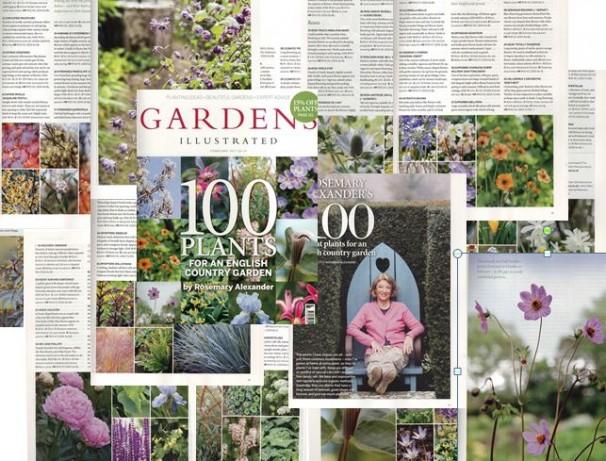 100 PLANTS COLLAGE